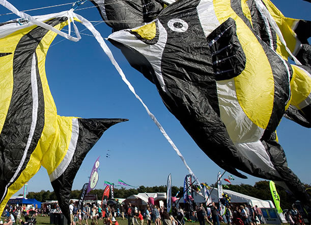 Weston Beach Kite Festival Saturday 8 and 9 June 11am - 5pm